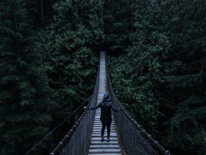 Palę mosty